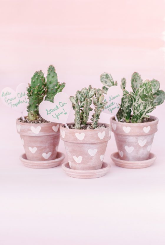 DIY Cactus Pots Ideas featured by top Phoenix lifestyle blog, Love and Specs