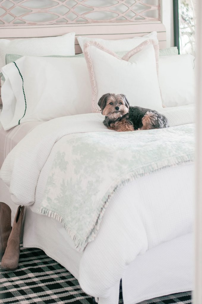 Cottage Style by popular Phoenix life and style blog, Love and Specs: image of a small dog on a bed with pink headboard, and white, pink and light green bedding.
